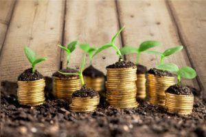 abundancia, prosperidad